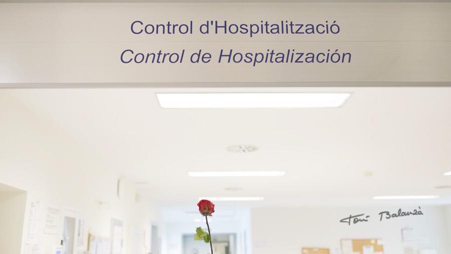 Área de control en planta de oncología-leucemia para ebmt