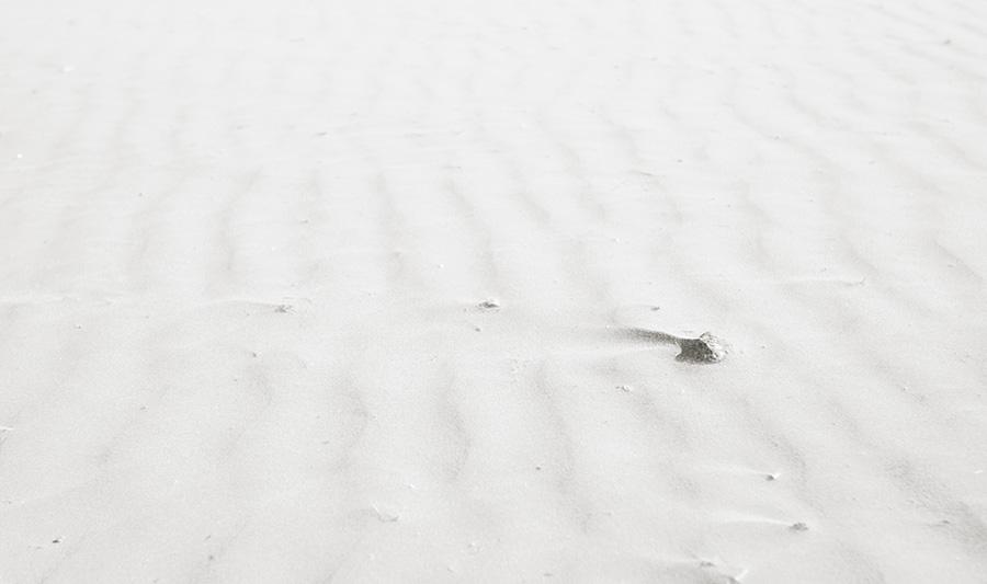 arena-playa-meliana-valencia