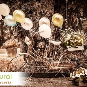 reportaje-comercial-floristeria-art-natural - Fotografía del reportaje fotográfico con fin comercial para la floristería art natural.