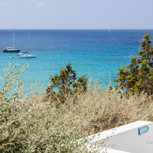 Cotton Beach Club Cala Tarida Ibiza -